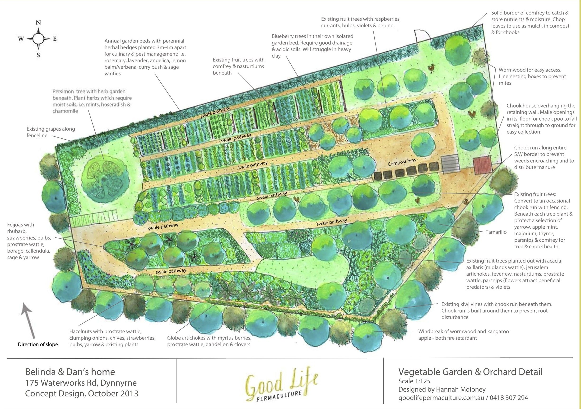 Permaculture plans google search garden layouts for Plan permaculture