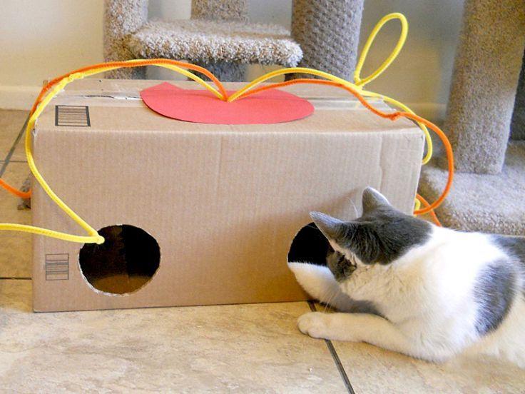 Fai Da Te giochi fai da te per gatti | gatti | pinterest | cat