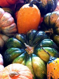 BEAVERTON FARMERS MARKET | it s fall at the wnc farmers market