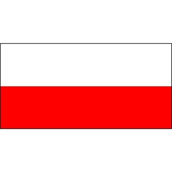 Laos Flag Magnet 4x6 inch International Flag Decal for Car or Fridge