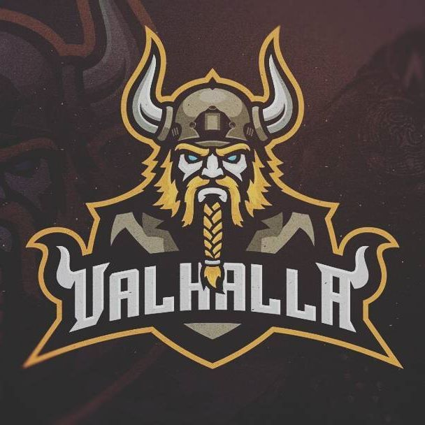 Logo designs for a Veteran eSport Team #khisnen #logo #esports