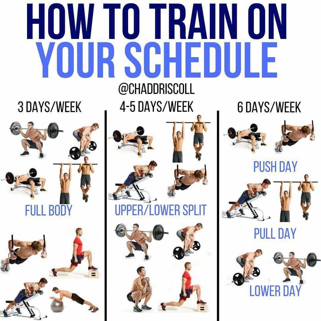 Workout Fitness Gym Bodybuilder Bodybuilding Delt Gym Workout Tips Fitness Body Workout Plan