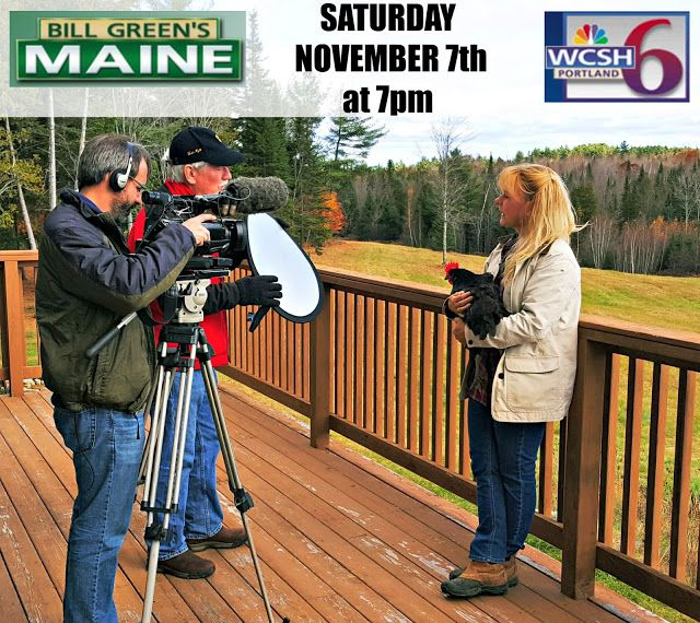 Bill Green's Maine Television