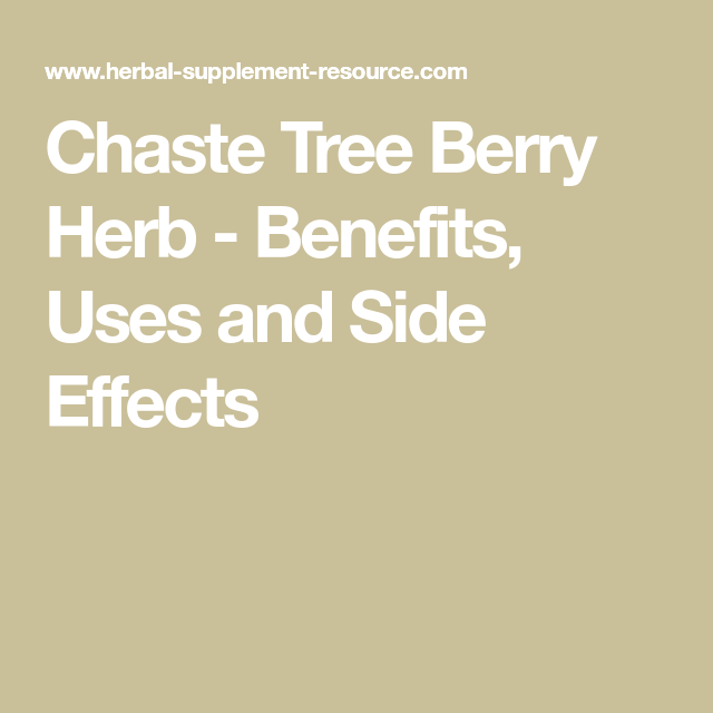 Chaste Tree Berry – Health Benefits and Side Effects   Vitex