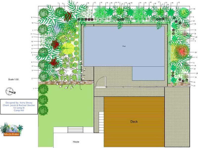 plan wwwpalmsforbrisbaneau My tropical garden Pinterest