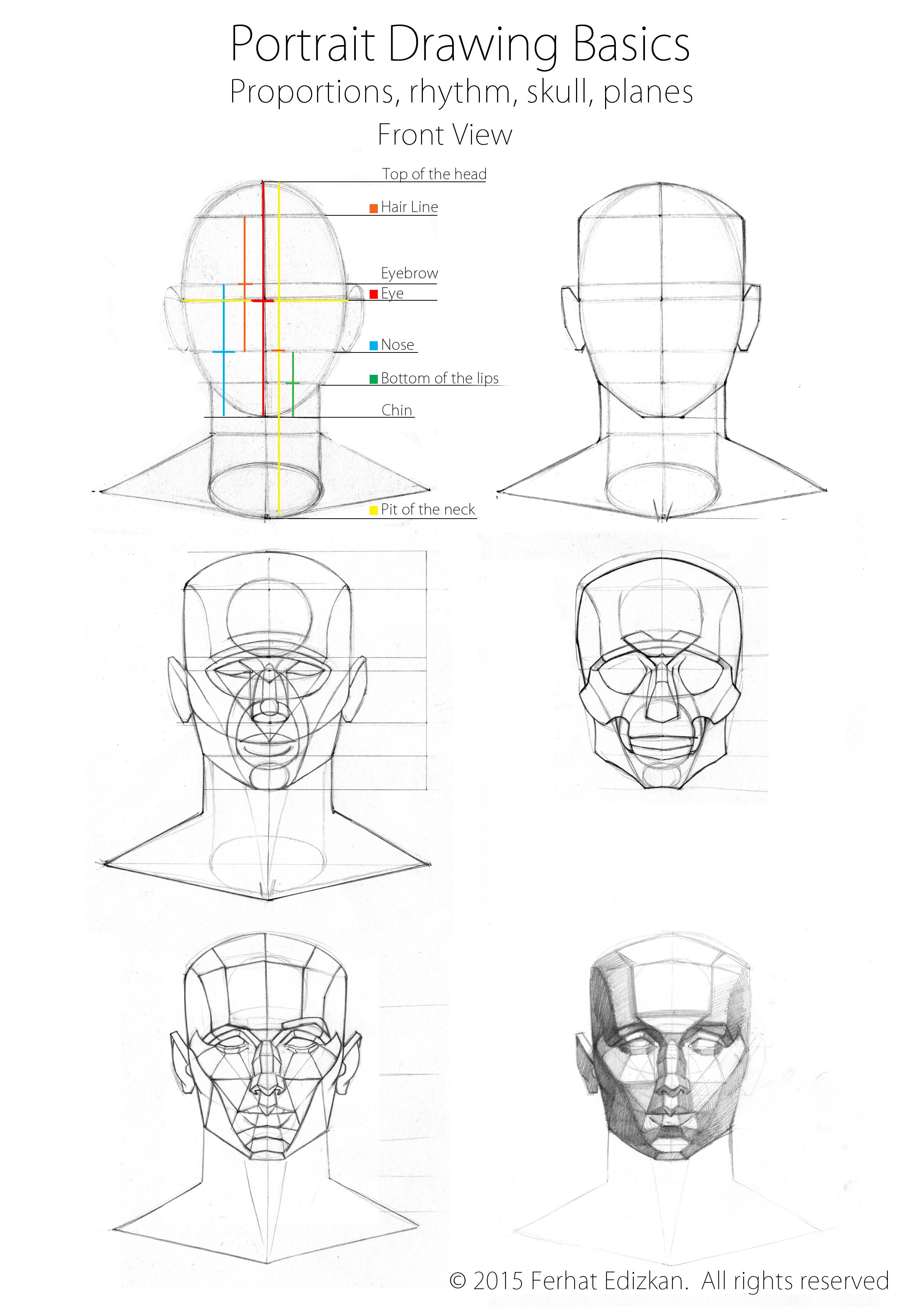 Portrait drawing basics drawing tips in 2019 3d drawing