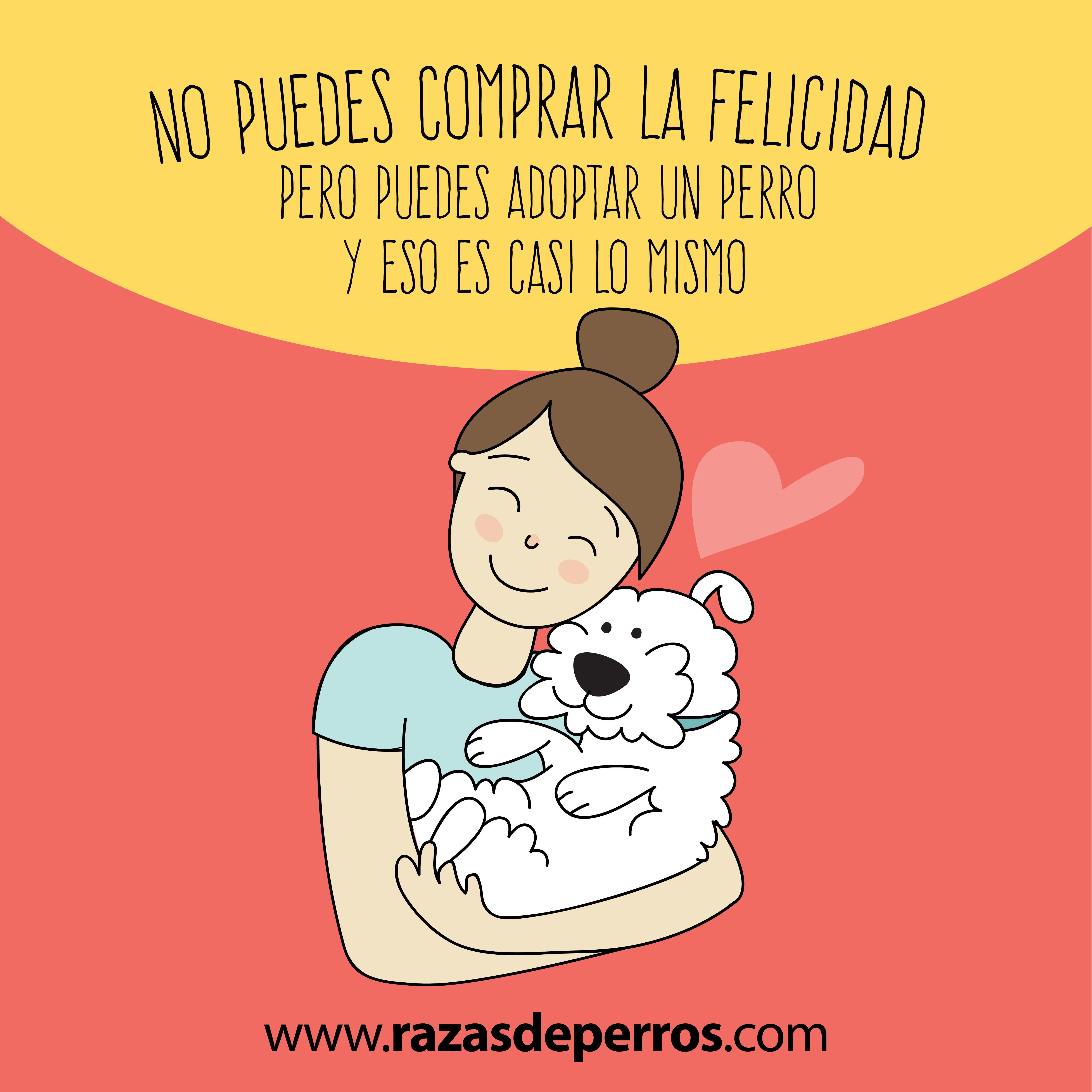 adoptar un perro da felicidad | Animalista, Amor X ellos | Pinterest