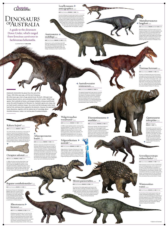 Illustrating the dinosaurs of Australia Australian