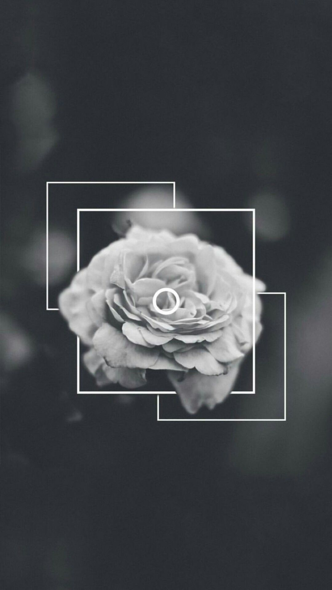 Black Wallpaper Backgrounds Iphone Wallpapers Ipod Lock Screen Floral Hipster Art