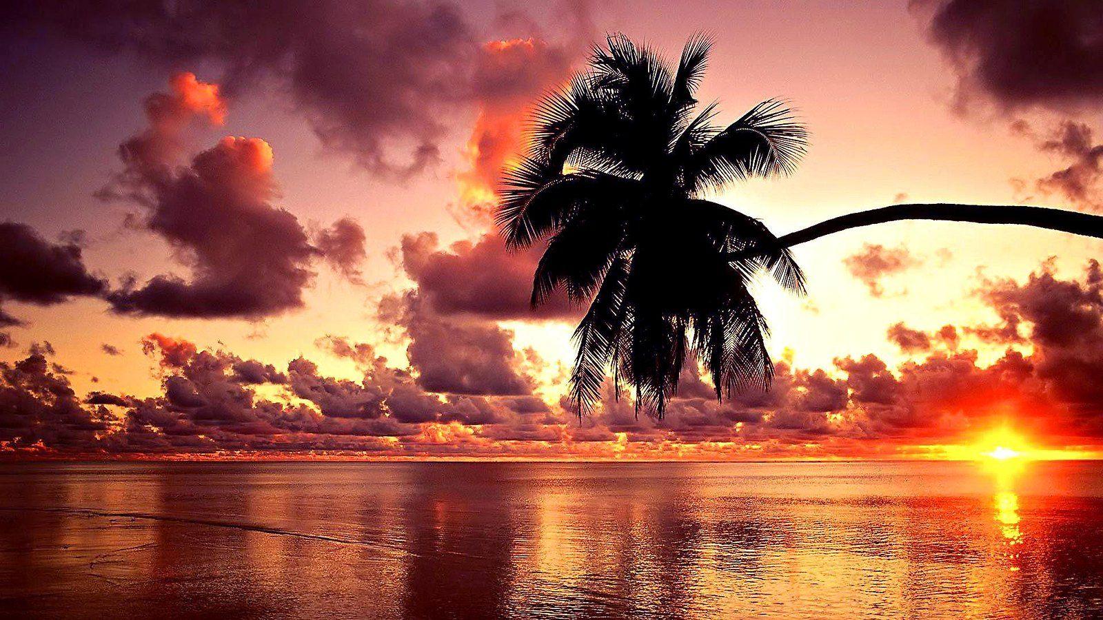 Beautiful Sunset Wallpaper Photography Wallpaper Sunset Landscape Love beach sunset sunset wallpaper hd