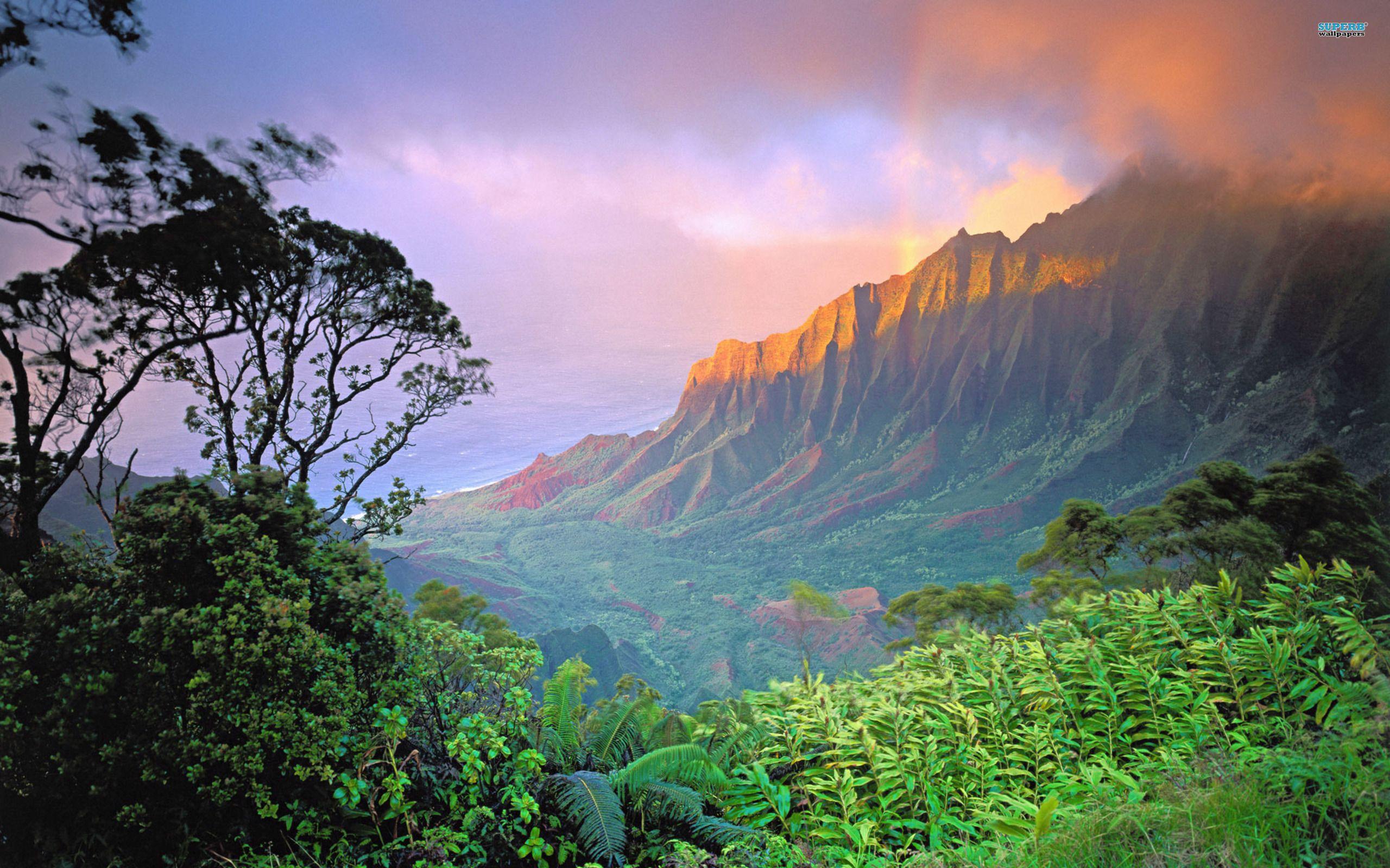 Amanecer en Hawai...
