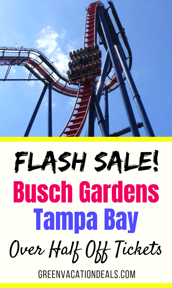 Where Can I Get Coupons For Busch Gardens
