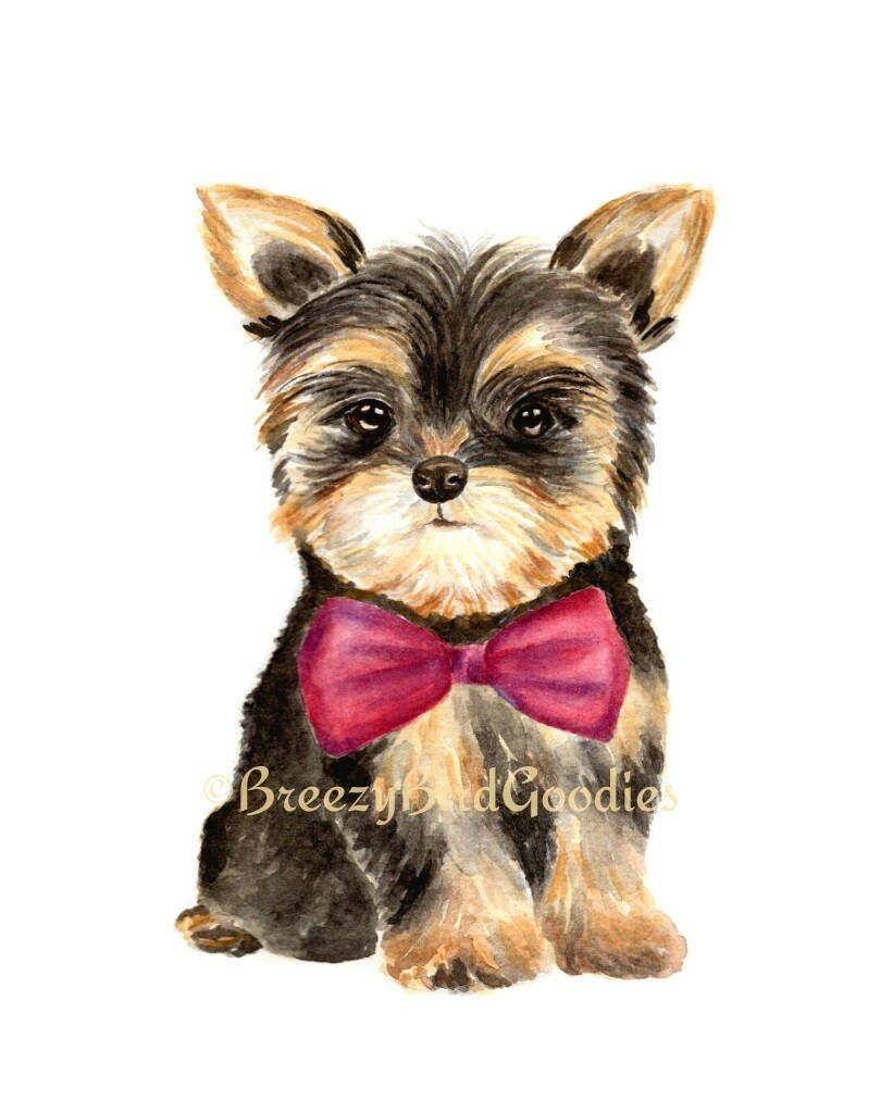 Yorkshire Terrier In Red Bow Tie Watercolour Dog Portrait Yorkie Terrier Illustration Cute Puppy Art Watercolor Pet Portrait Watercolor Dog Portrait Watercolor Pet Portraits Puppy Art