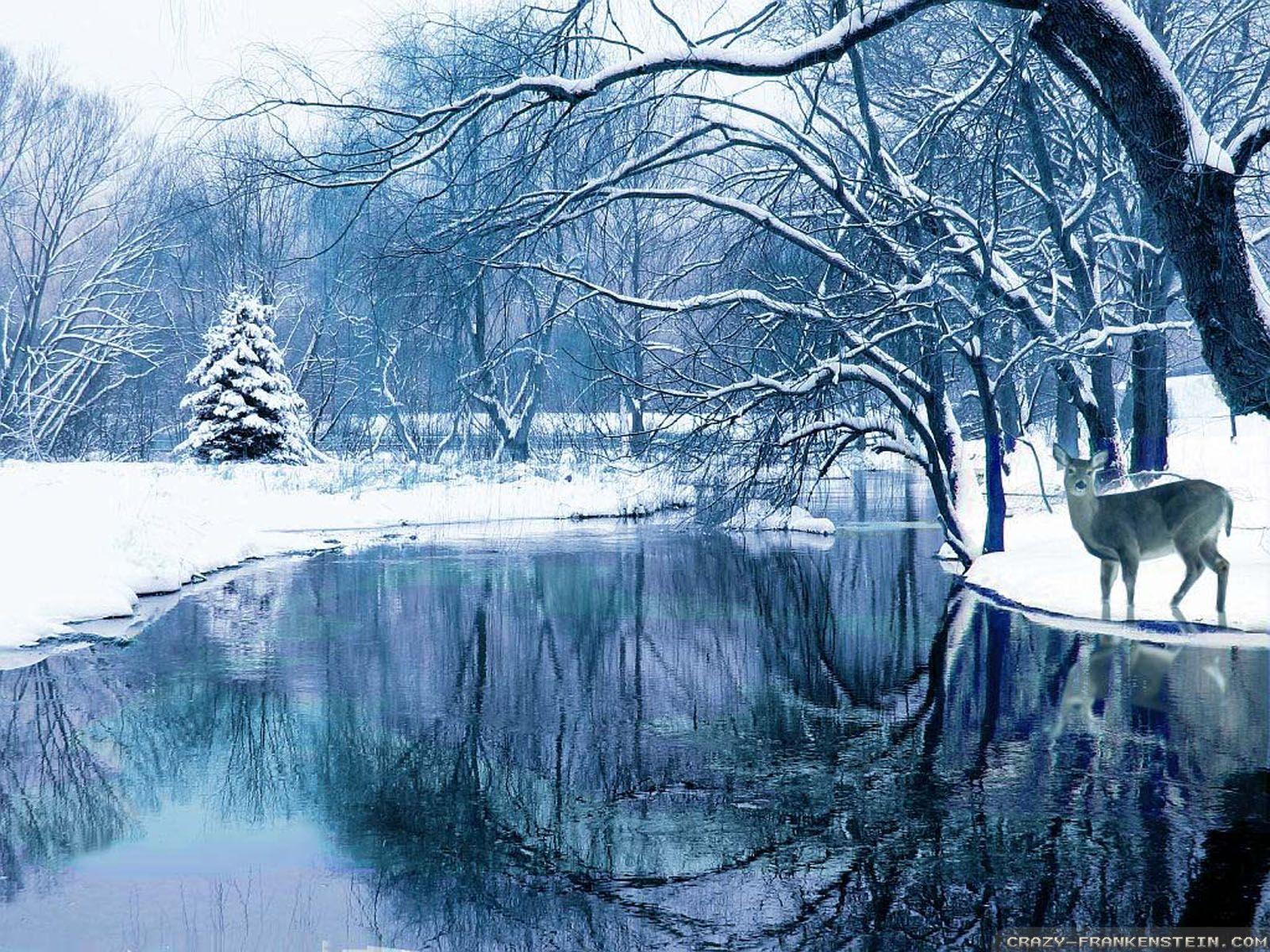 Winter Nature wallpapers - Crazy Frankenstein | Nature ...
