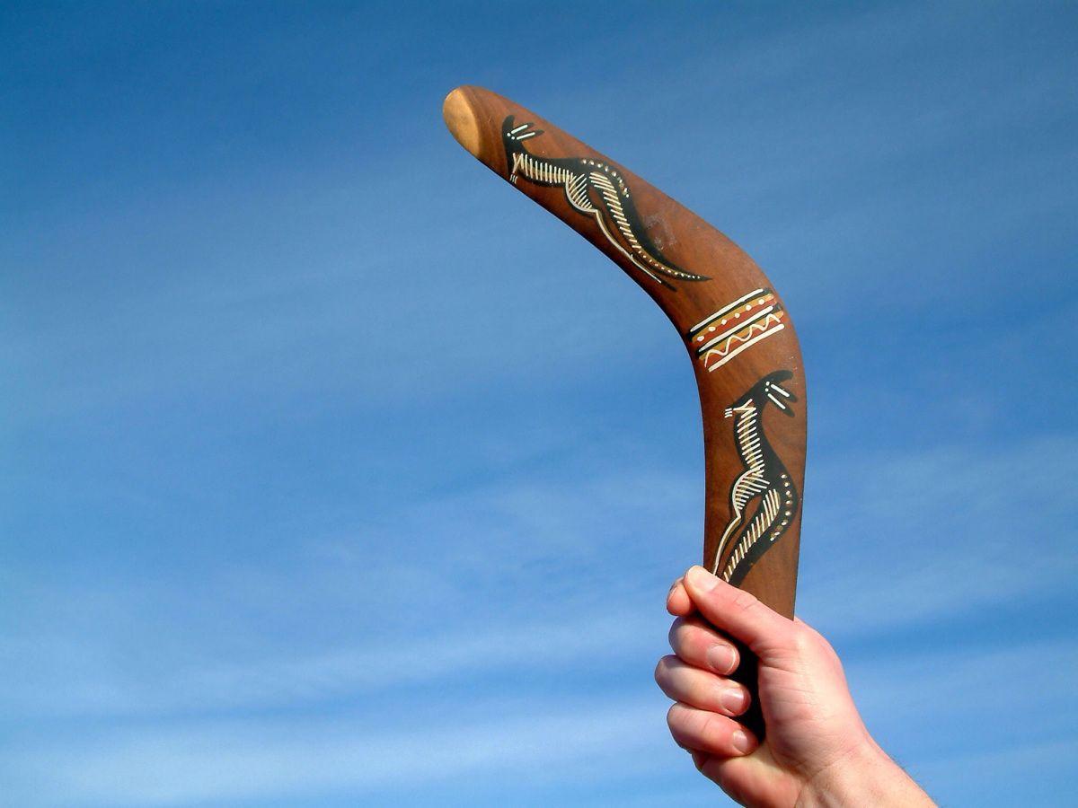 Boomerang Water Tribe Avatar The Last Airbender The Last Airbender
