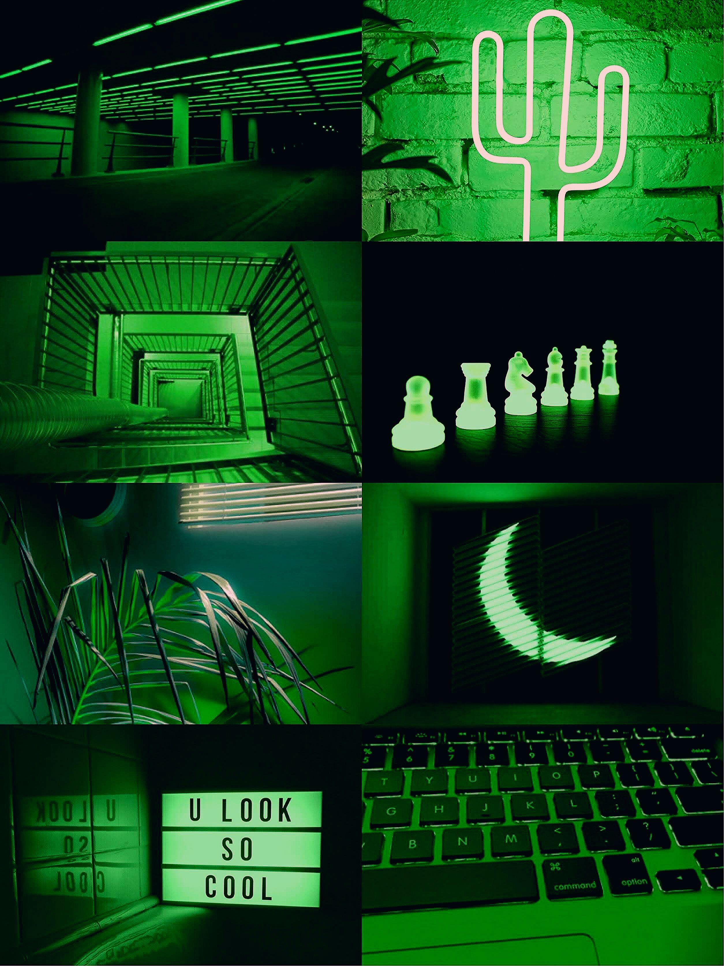 Pastel Green Aesthetic Photos