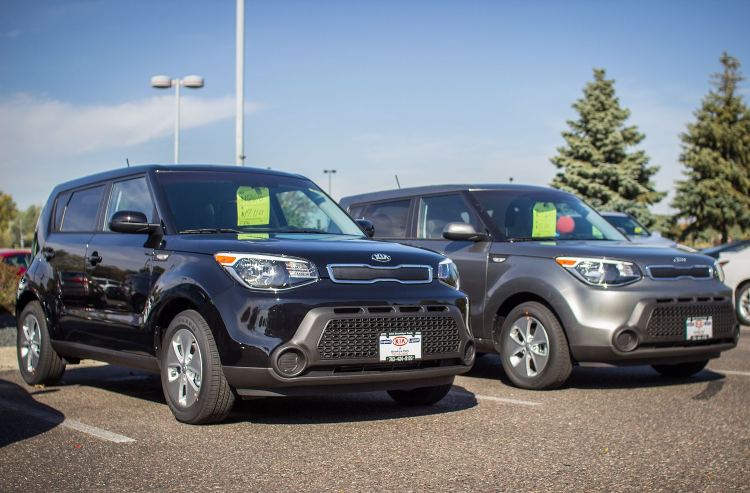 We have the new 2014 KIA Soul's on the lot! Kia
