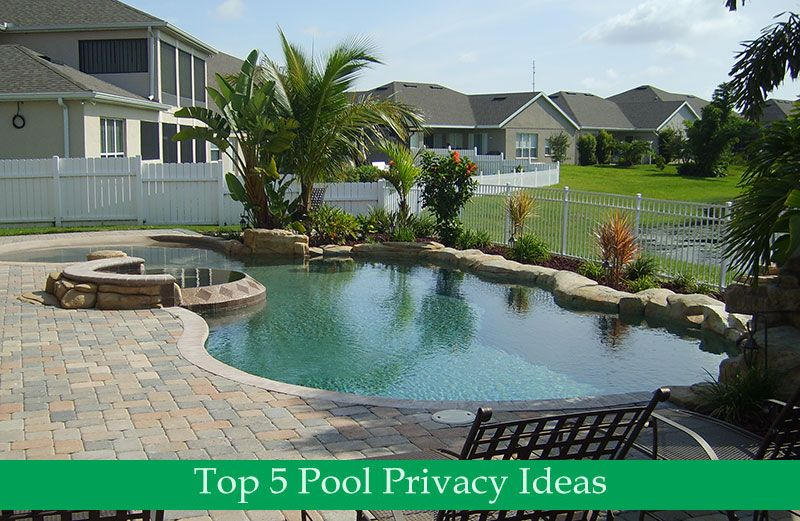 Top 5 Pool Privacy Ideas Pool Screen Enclosures Spa Pool
