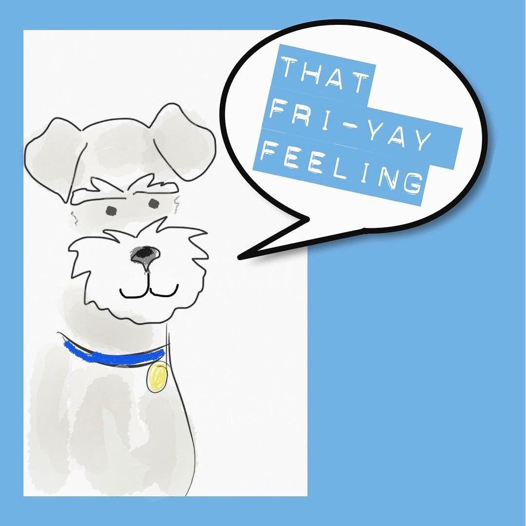 I've got that Fri-yay feeling #friyay #dogsofinsta #minischnauzer #schnauzerart