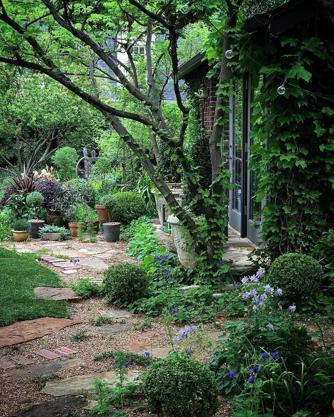 Pin On Pergola Arbor Backyard garden for rent