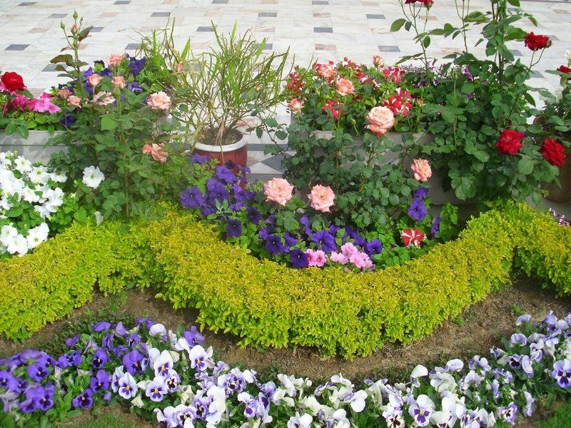 Jardin alrededor de arbol buscar con google jardin for Arbol para jardin