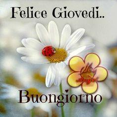 Buongiorno e buon gioved buon gioved pinterest for Foto buongiorno amici