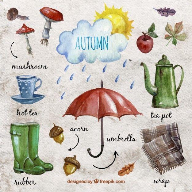 Autumn Essentials Illustration . Essentials Illustration #helloautumn