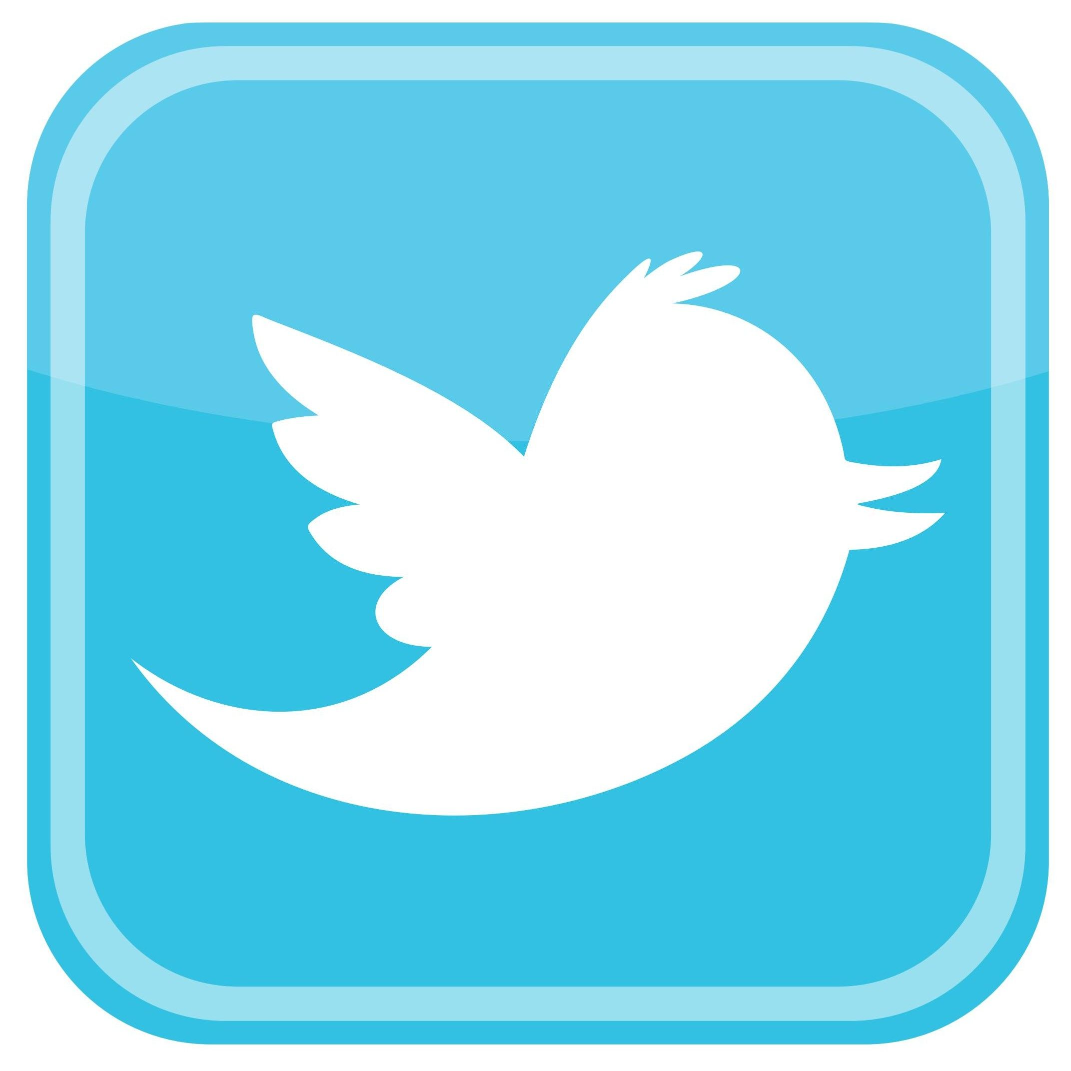 Twitter Bird Icon Logo Vector [EPS File]