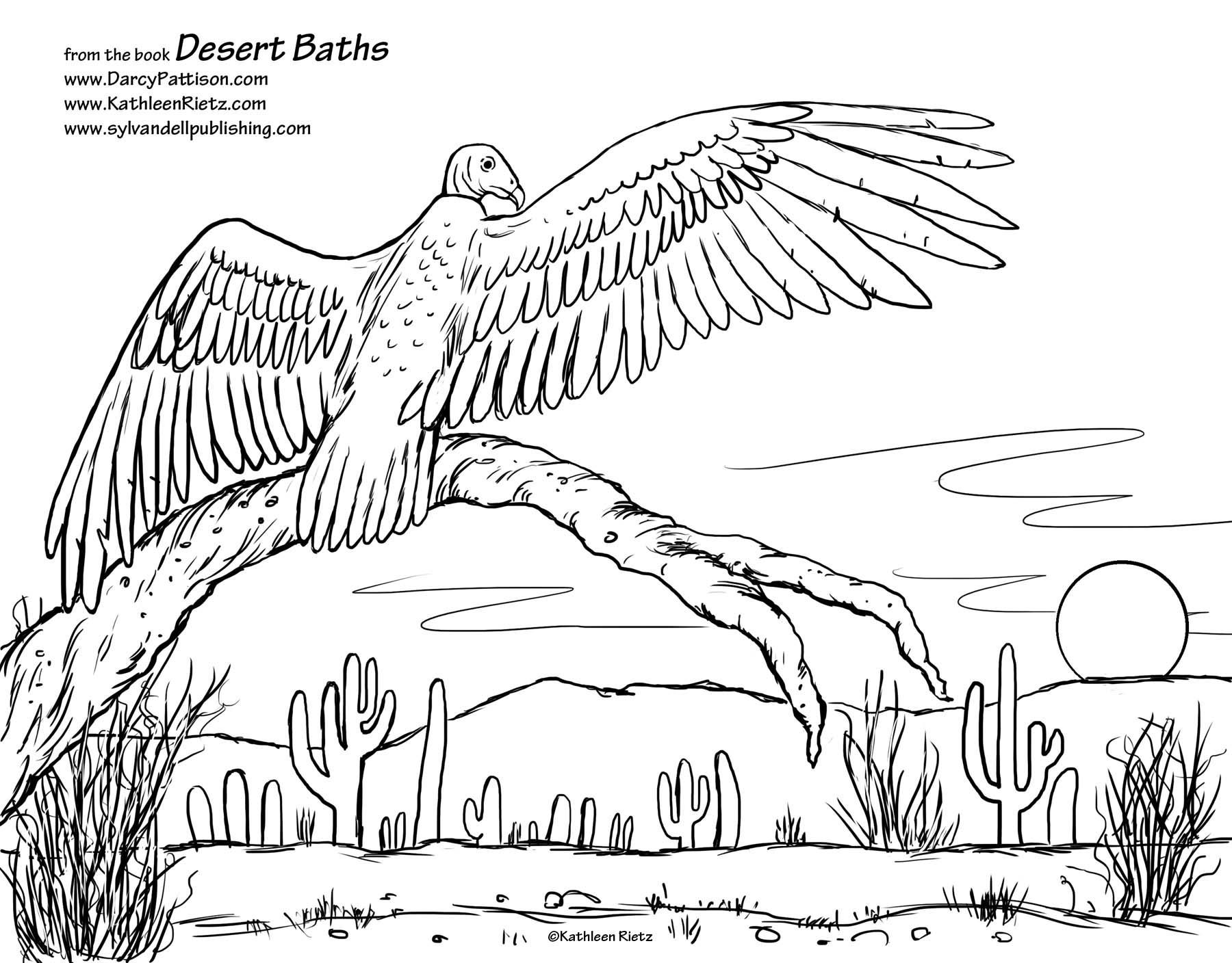 street art coloring pages have you ever wondered how desert animals stay clean sylvan dell. Black Bedroom Furniture Sets. Home Design Ideas