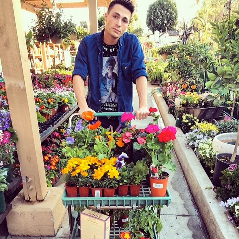 coltonlhaynes 50 The Life of Colton Haynes
