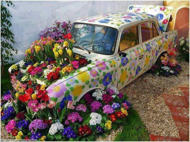 An old car becomes a floral haven!!!