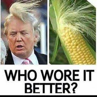 Bit Of A Laugh Good Old Corn Head Trump Trump Usa Funnymeme