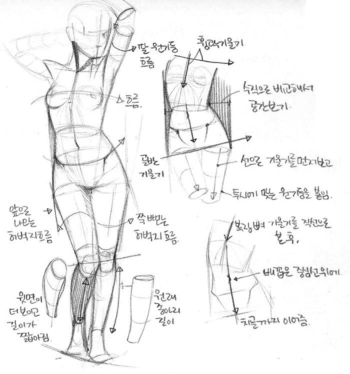 female figure/body study | reloj con cartas | Pinterest | Anatomía ...
