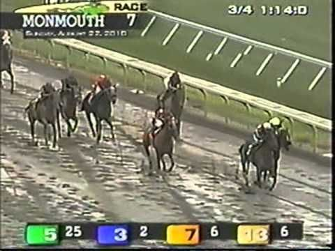Horse racing betting videos graciosos sports spread betting calculator