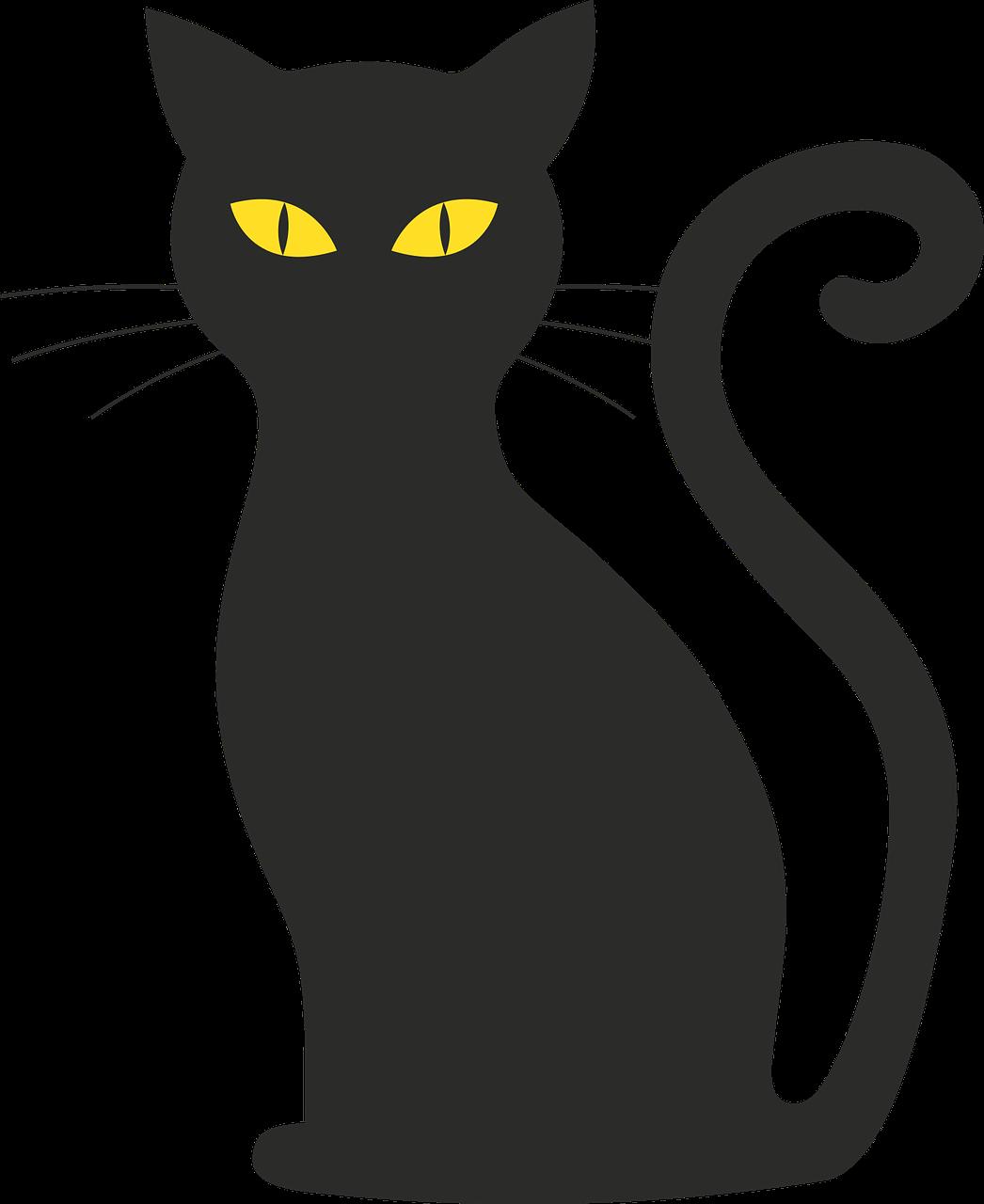 Free Image On Pixabay Cat Halloween Silhouette Mieze Dessin De Chat Noir Chat Noir Halloween Dessin Silhouette Chat