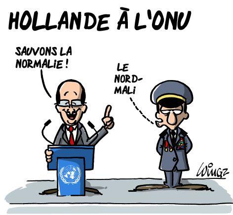 Intervention Au Mali Caricatures O N U Mali