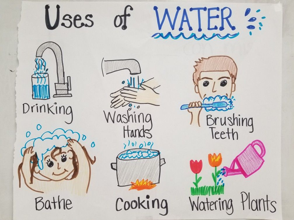 Uses Of Water 1st Grade Teks Anchor Chart With Images Water