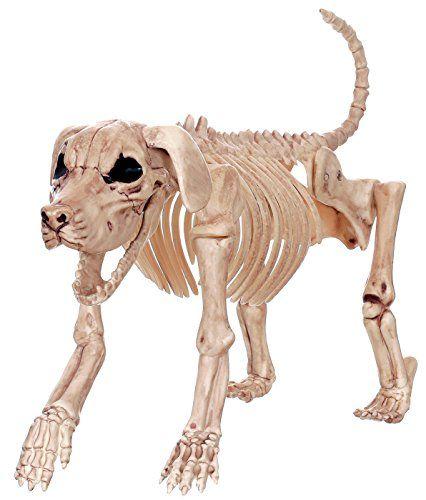 Crazy Bonez Skeleton Dog Beagle Bonez *** Want to know more, click