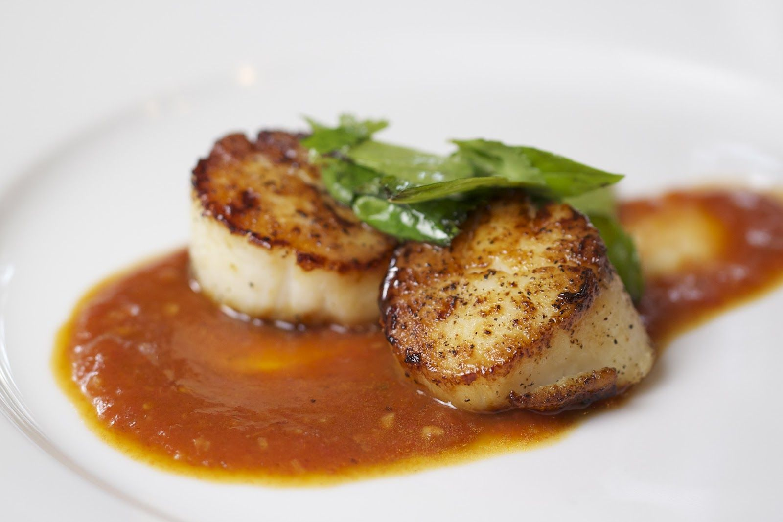 Thyme In Our Kitchen: Seared Scallops with Tomato-Lemongrass Sauce