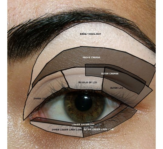 Makeup tips for beginners eyeshadow placement eye makeup diagram tutorial reference eye diagram parts of the eye basic eye makeup ccuart Images