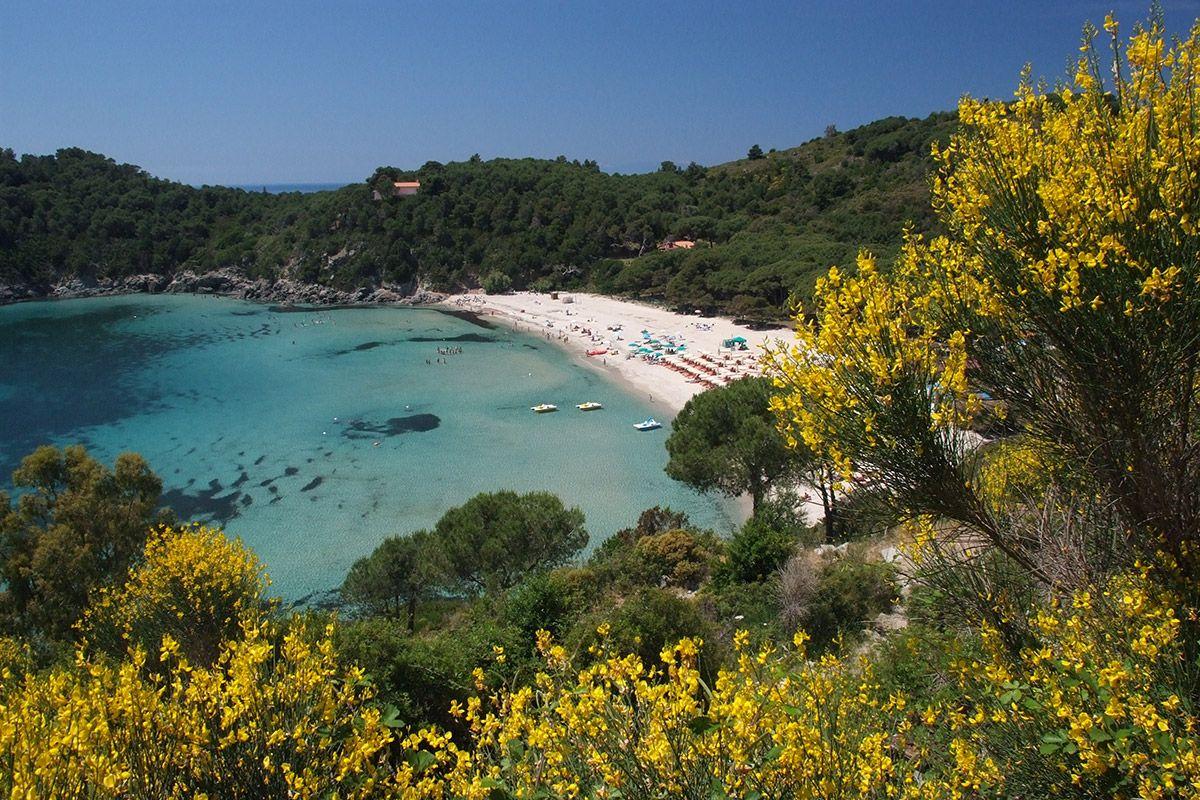Isola d'Elba Isola d'elba, Isola, Vacanze