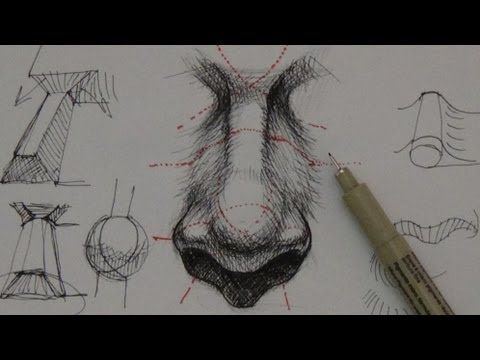 Pen Ink Drawing Tutorials | How to draw a realistic nose - YouTube