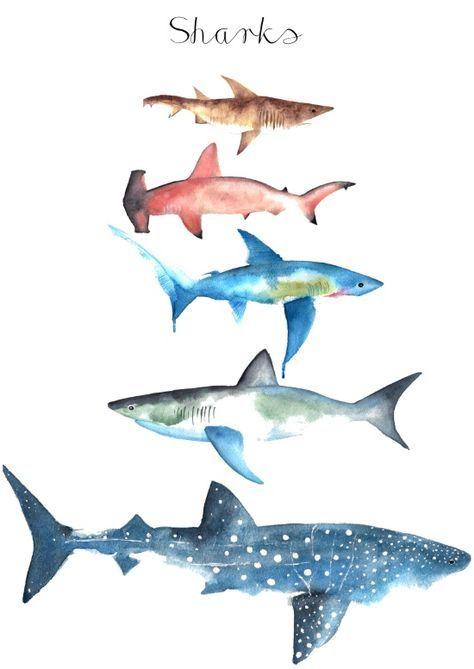 Sharks Art Print Mit Bildern Aquarell Fisch Meerestiere