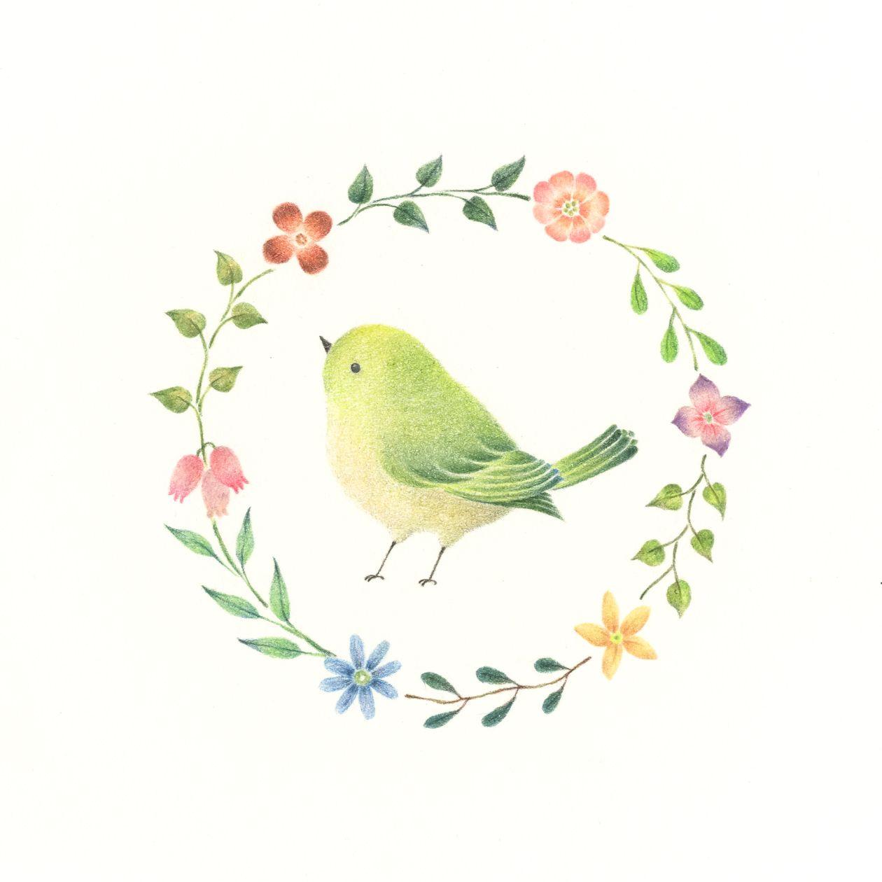 Atelier Rili Posts Tagged Illustrations 鳥 絵 赤ちゃんのイラスト 小鳥 イラスト