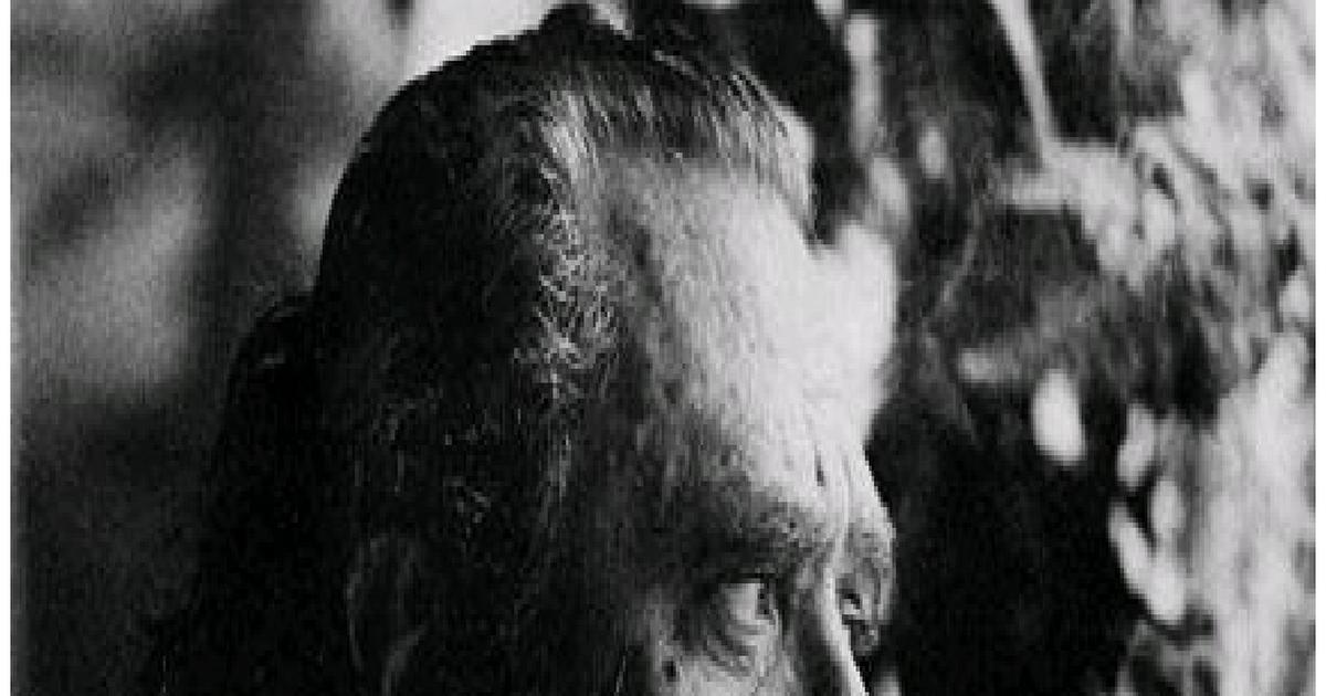 Bukowski Knjige Pdf