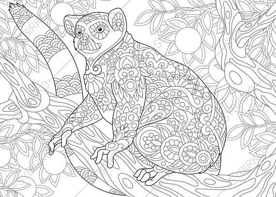 Adult Coloring Pages Lemur Zentangle Doodle Book