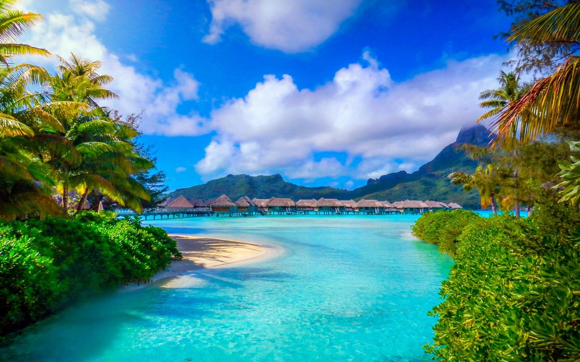 Bora Bora French Polynesia Nature Landscape Beach Sea Palm