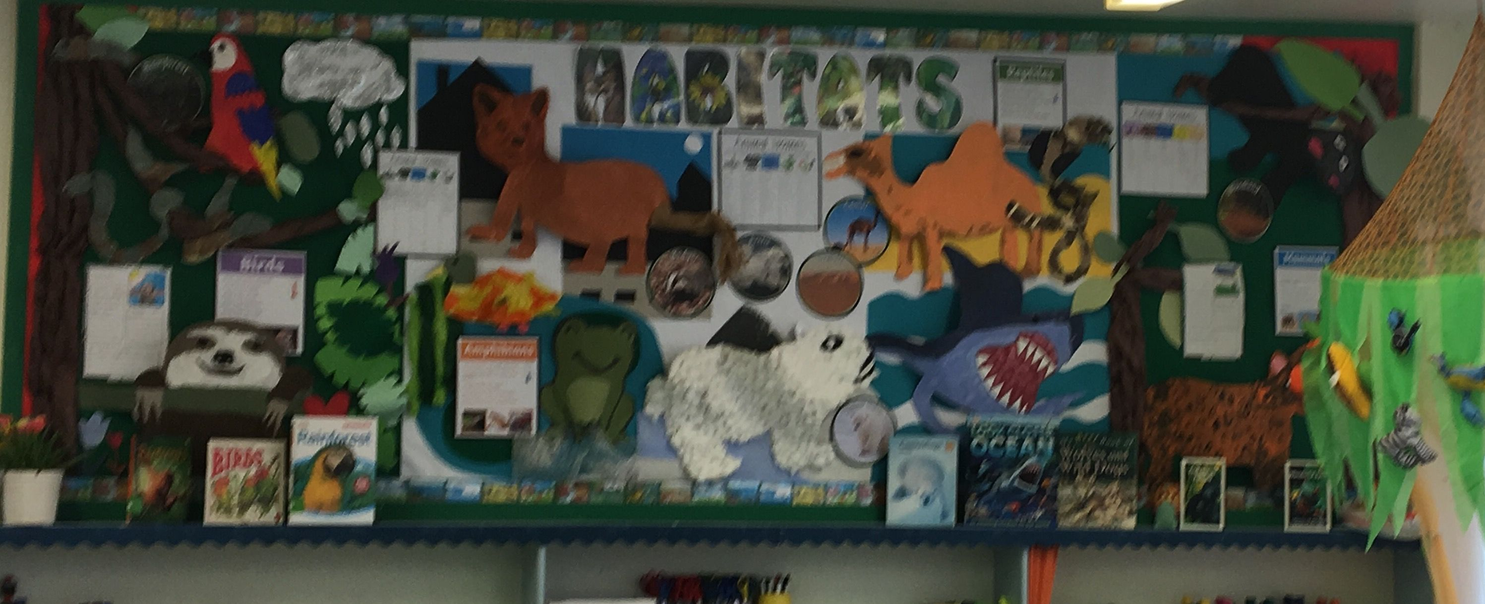 Habitats Ks1 Display