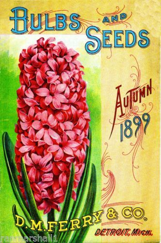 Detroit Michigan Vintage Flowers Seed Packet Catalogue Advertisement Poster