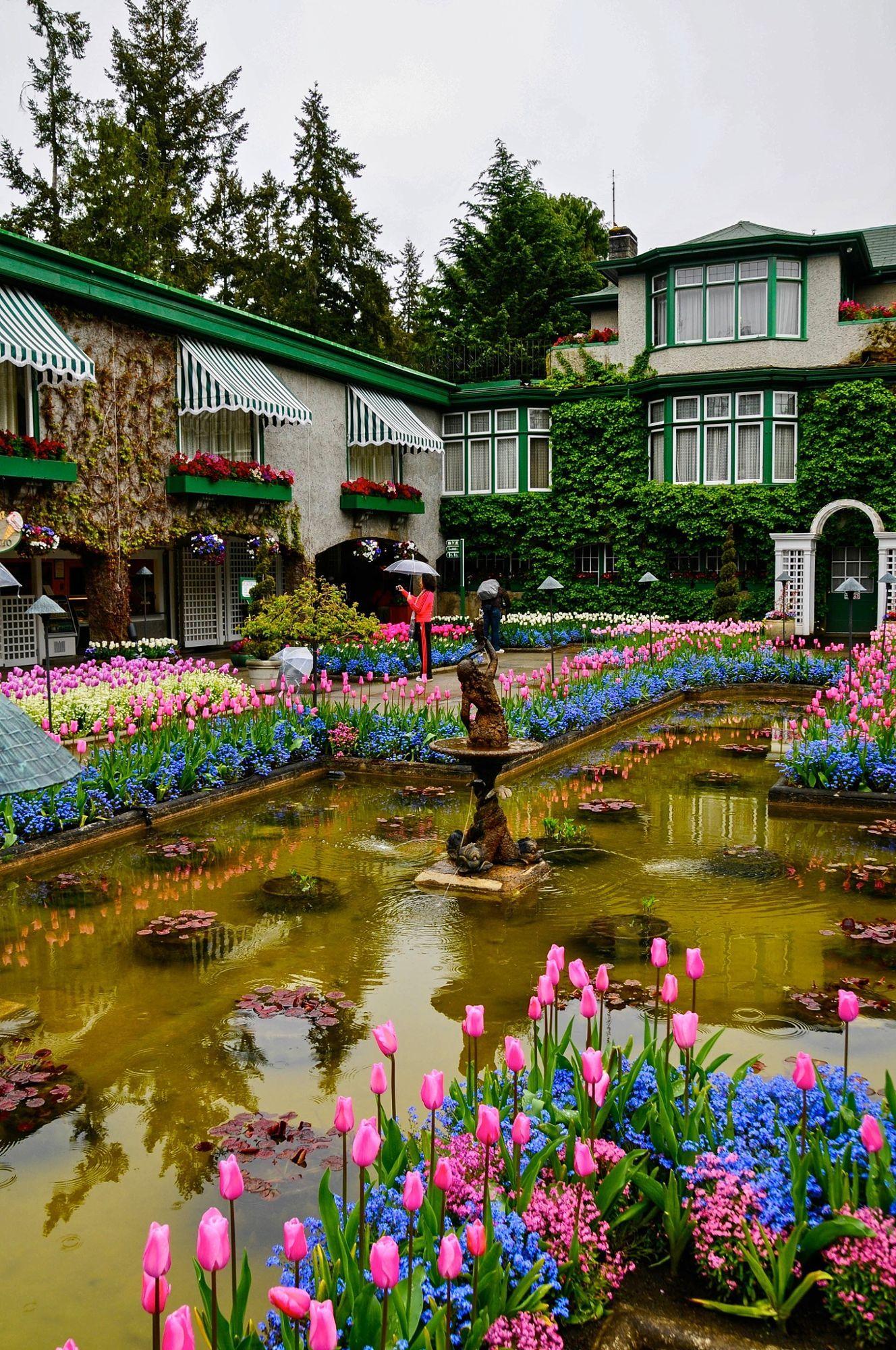 Victoria, British Columbia in 2019 | Buchart gardens ...